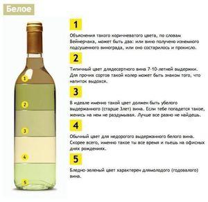 Вино и его осветление