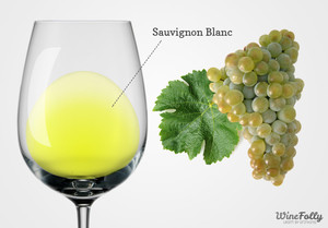 Цвет вина Савиньон