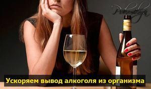 Как долго выводитмя алкоголь из лрганизма