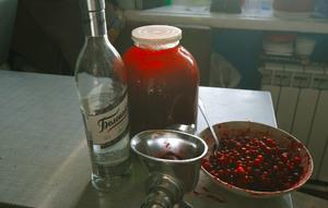 Клюква на спирту в домашних условиях